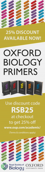 Oxford RSB Primers