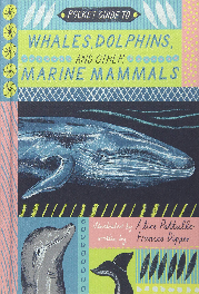 A pocket guide to whales