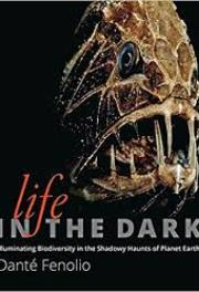 Lifeinthedark2