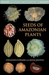 Seeds of Amazonian Plants