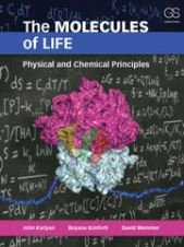 The Molecules of Life