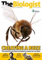 Magazine /images/biologist/archive/2013_08_01_Vol60 No4 Creating a Buzz