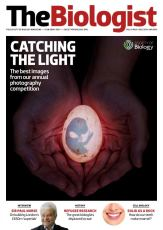 Magazine 2014_12_01_Vol61_No6_Catching_the_Light