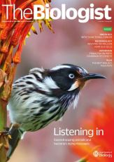 Magazine /images/biologist/archive/2021_02_02_Vol68_No1__Listening_In