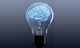 Shedding Light on the Brain